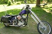 purple panhead chopper thumb